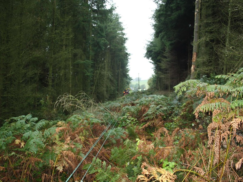 Forestry tractor and winch utilised to extract softwood trees on a 11kv outage and line drop for ETR132 tree clearance