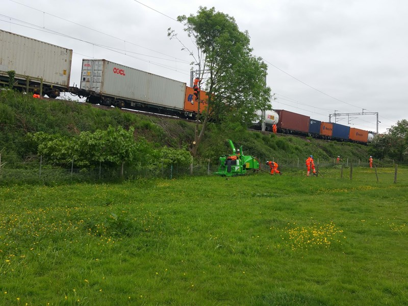 "Section felling on the West Coast Mainline with ""live"" frieght movements"